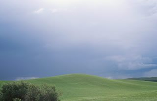 Image of a storm in a green field